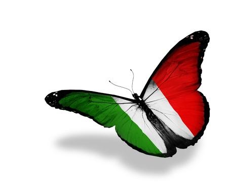 butterflies flying: Bandera italiana de la mariposa de vuelo, aisladas sobre fondo blanco Foto de archivo
