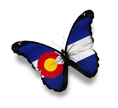 colorado flag: Colorado flag butterfly, isolated on white