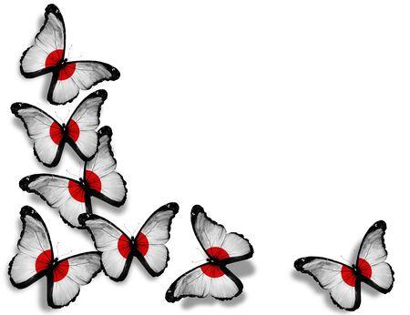 bandera japon: Mariposas japonesas bandera, aisladas sobre fondo blanco