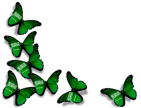 Saudi Arabia flag butterflies, isolated on white background photo