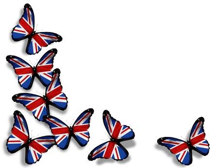 drapeau angleterre: Papillons pavillon anglais, isol� sur fond blanc
