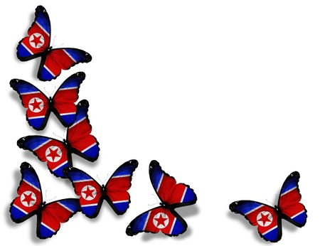 Korean flag butterflies, isolated on white background photo