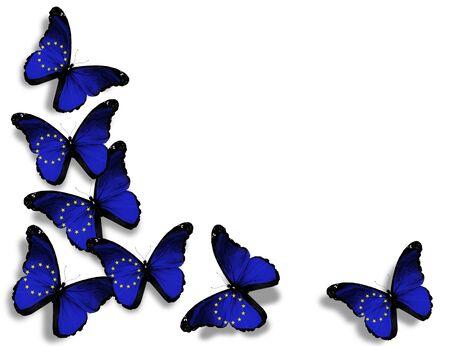 european people: European Union flag butterflies, isolated on white background Stock Photo