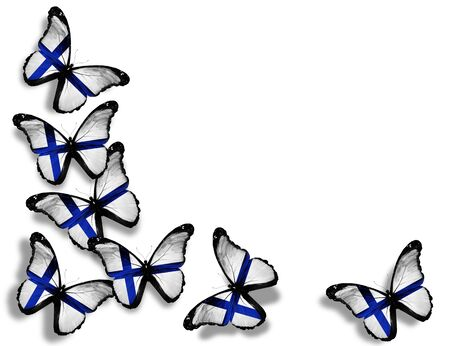 finland flag: Finnish flag butterflies, isolated on white background Stock Photo