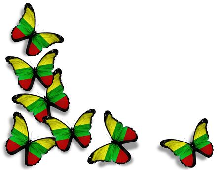 lithuanian: Lithuanian flag butterflies, isolated on white background