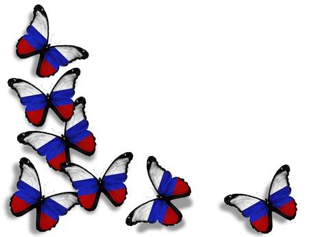 russian flag: Russian flag butterflies, isolated on white background Stock Photo