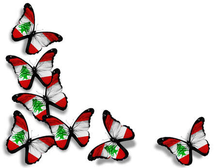 Lebanese flag butterflies, isolated on white background photo