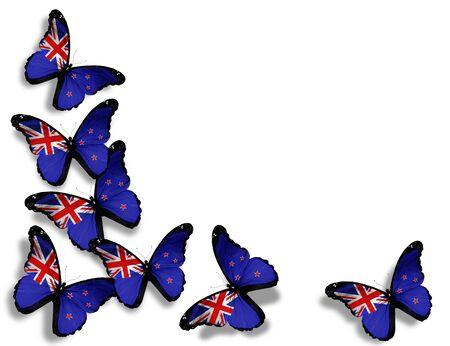 mariposas volando: Nuevos mariposas bandera de Nueva Zelanda, aisladas sobre fondo blanco
