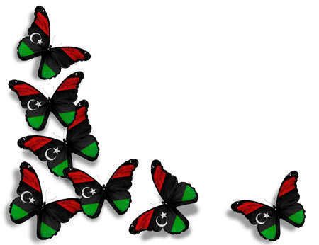 Libyan flag butterflies, isolated on white background photo