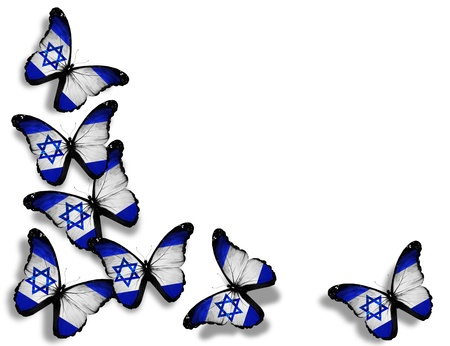 and israel: Israeli flag butterflies, isolated on white background