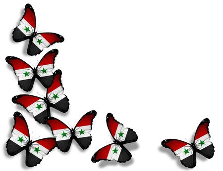 syria: Syrian flag butterflies, isolated on white background