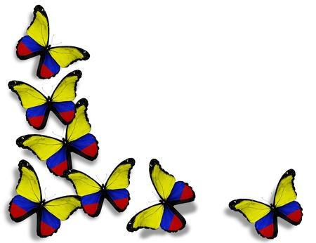 la bandera de colombia: Mariposas de bandera colombiana, aislados en fondo blanco