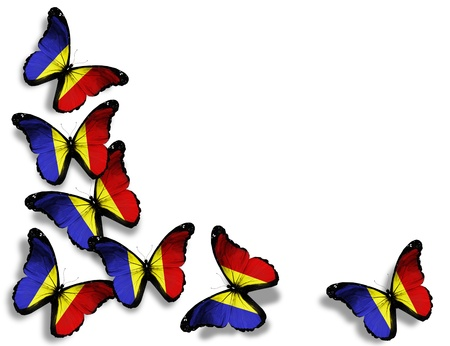 romanian: Romanian flag butterflies, isolated on white background