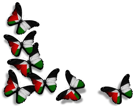 palestine: Palestinian flag butterflies, isolated on white background