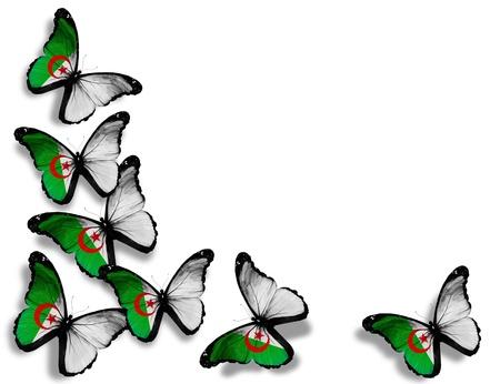 Algeria: Algerian flag butterflies, isolated on white background