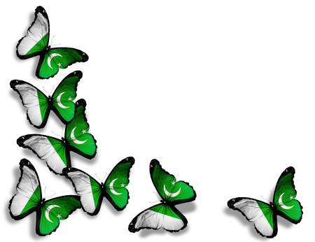 pakistani pakistan: Pakistani flag butterflies, isolated on white background