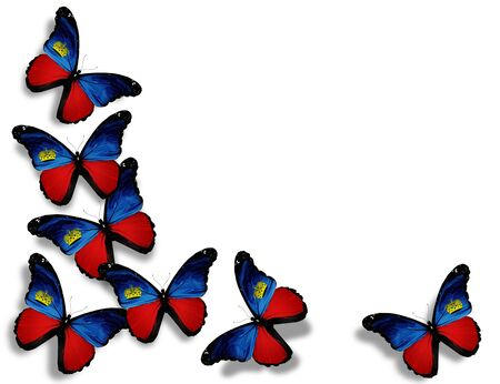 Liechtenstein flag butterflies, isolated on white background photo
