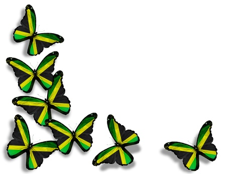 jamaican: Jamaican flag butterflies, isolated on white background Stock Photo