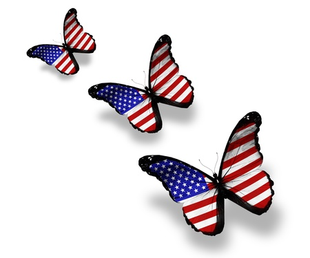 Three american flag butterflies, isolated on white photo