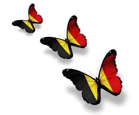 black flag: Three Belgian flag butterflies, isolated on white