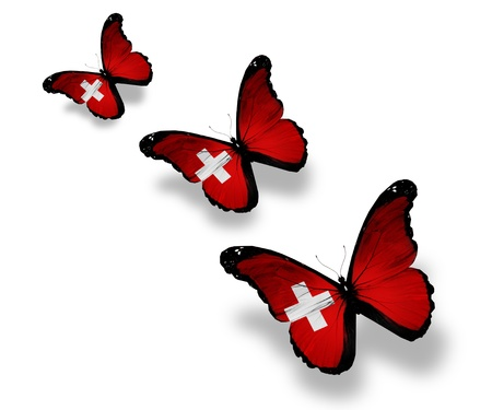 Three Swiss flag butterflies, isolated on white photo