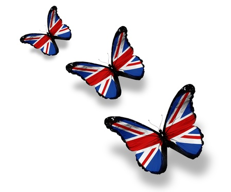 drapeau angleterre: Trois papillons pavillon anglais, isol� sur blanc