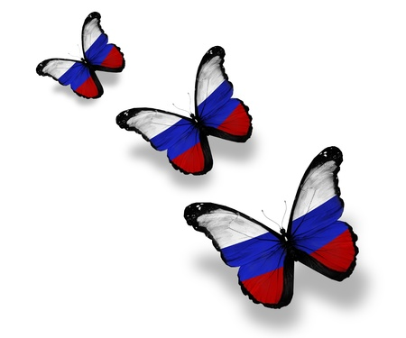 russian blue: Three Russian flag butterflies, isolated on white Stock Photo