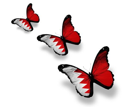 Three Bahraini flag butterflies, isolated on white photo