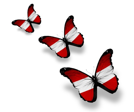Three Austrian flag butterflies, isolated on white