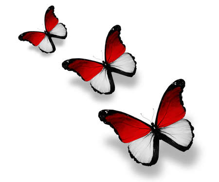 monegasque: Three Monegasque flag butterflies, isolated on white