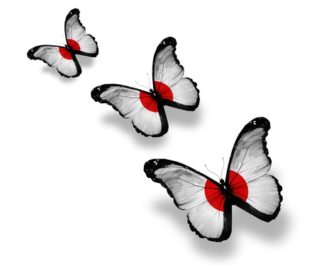 Three japanese flag butterflies, isolated on white photo