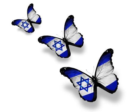 israel people: Three Israeli flag butterflies, isolated on white Stock Photo
