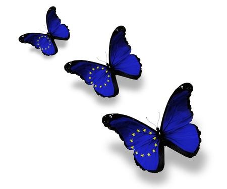 Three European Union flag butterflies, isolated on white photo
