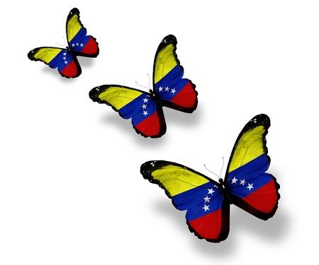 Venezuela flag: Tres mariposas bandera venezolana, aislados en blanco