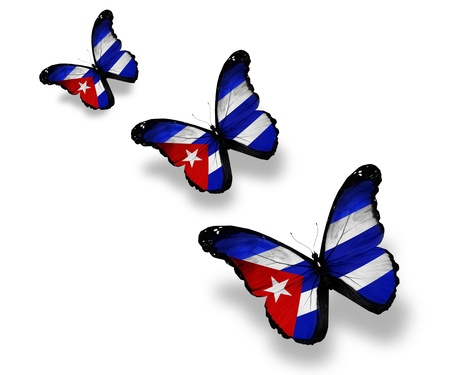 Three Cuban flag butterflies, isolated on white Stock Photo