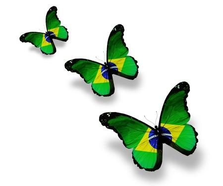 mariposas amarillas: Tres mariposas de bandera brasile�a, aislados en blanco