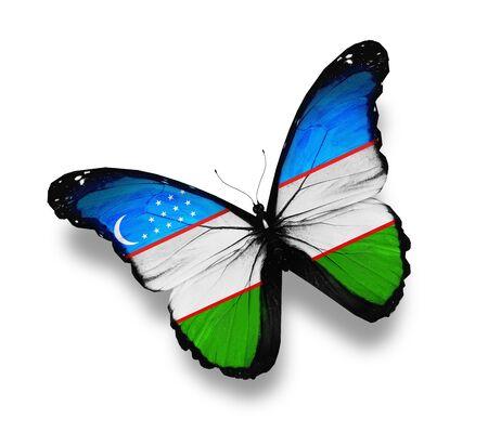 uzbek: Uzbek flag butterfly, isolated on white Stock Photo
