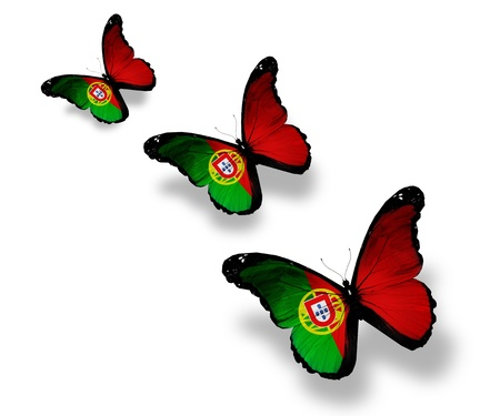portugal flag: Three Portuguese flag butterflies, isolated on white