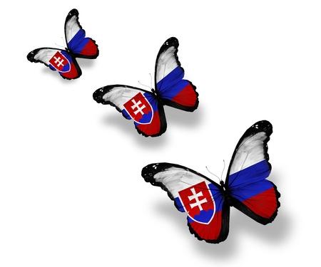 Three Slovakian flag butterflies, isolated on white photo