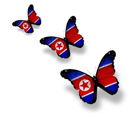 Three Korean flag butterflies, isolated on white photo