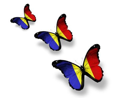 romanian: Three Romanian flag butterflies, isolated on white