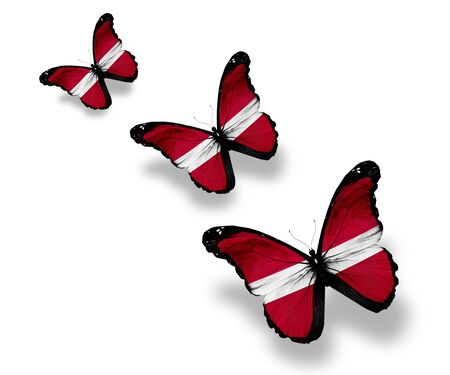 Three Latvian flag butterflies, isolated on white photo