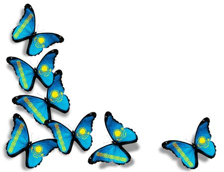 Kazakhstani flag butterflies, isolated on white background photo