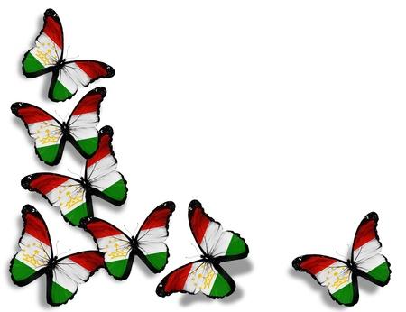 spring  tajikistan: Farfalle bandiera tagiki, isolato su sfondo bianco