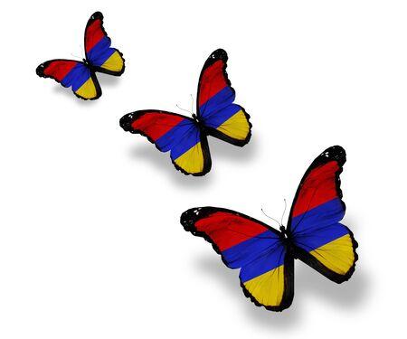 Three Armenian flag butterflies, isolated on white photo
