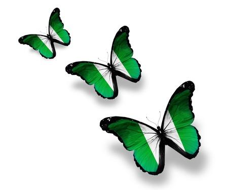 nigeria: Three Nigeria flag butterflies, isolated on white