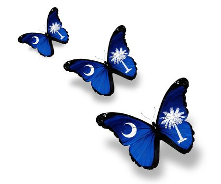 Three South Carolina flag butterflies, isolated on white photo
