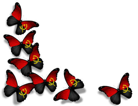 Angolan flag butterflies, isolated on white background Stock Photo - 13275456