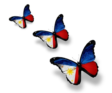 philippine: Three Philippine flag butterflies, isolated on white