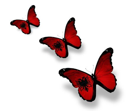 albanian: Three Albanian flag butterflies, isolated on white